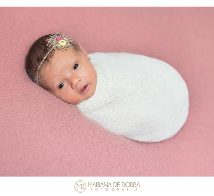 Antônia   7 dias de vida   ensaio newborn   menina   fotógrafo infantil e de família São Leopoldo